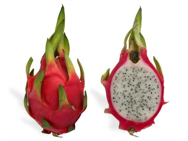 Dragon fruit Wikipedia