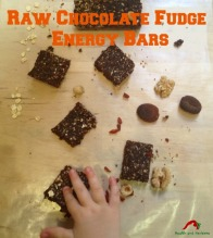 raw chocolate fudge date bars